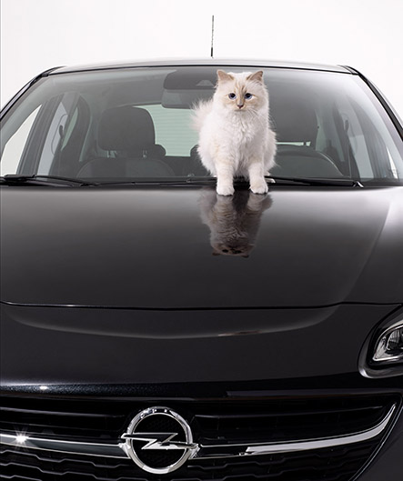 Opel-Corsa-Lagerfeld-Coupette Lagerfeld